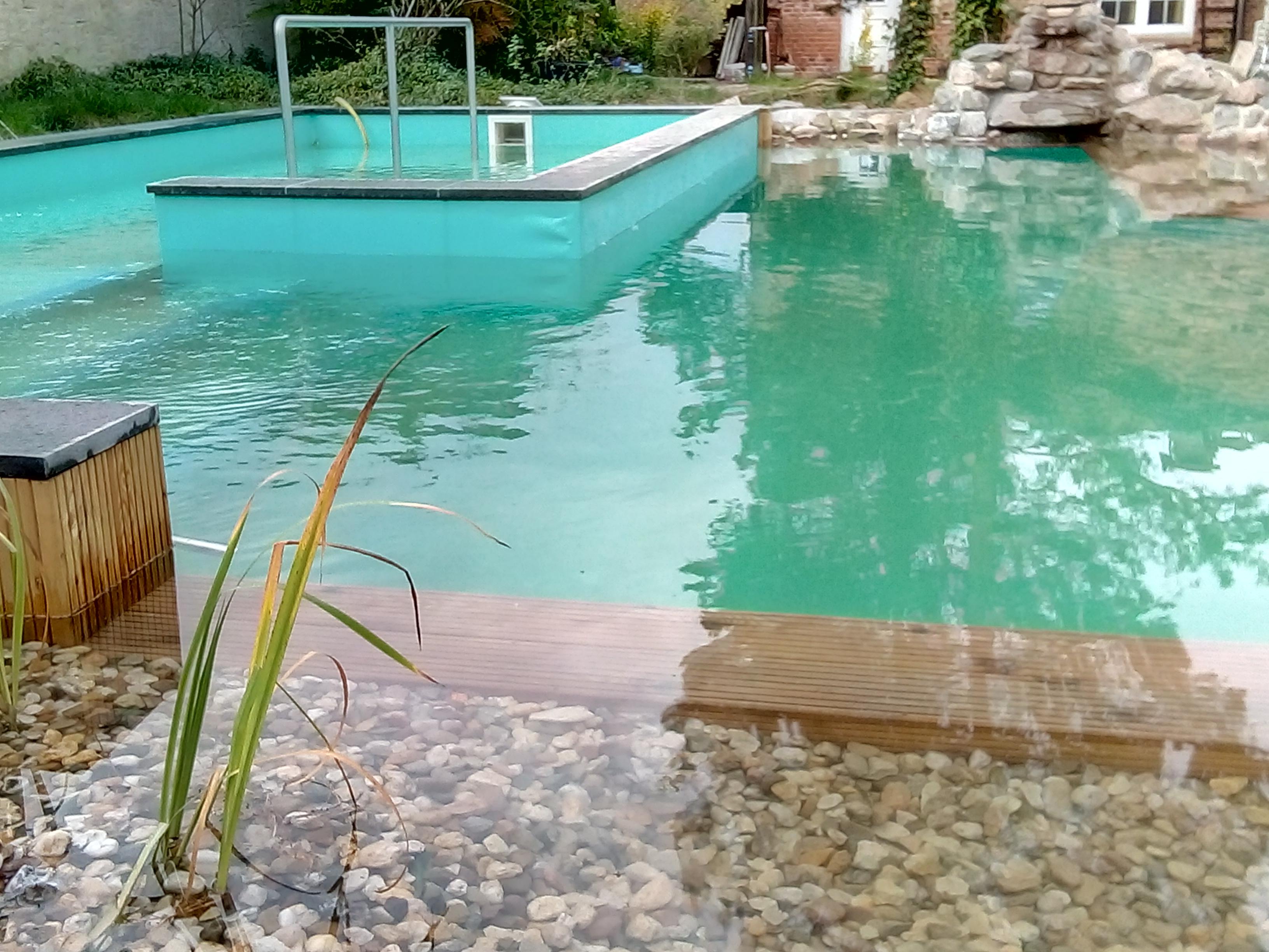 Schwimmteich1